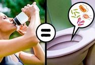 """Đừng dùng lại chai nhựa cũ để đựng nước, vì điều đó không khác nào """"uống nước từ bồn cầu"""""""