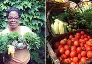 Ít ai ngờ bà hoàng truyền thông Oprah Winfrey lại có vườn rau đẹp đến thế