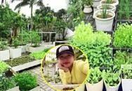 """Vườn rau đáng ngưỡng mộ của mẹ Sóc Trăng từng """"trồng rau muống 3 tháng chưa được ăn"""""""