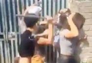 Hà Nội: Công an vào cuộc điều tra nhóm thanh niên dùng tuýp sắt hành hung cô gái trẻ
