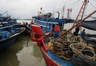 Nghệ An ra công điện khẩn cấm tàu thuyền ra khơi