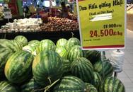 Dưa hấu Nhật trồng đất Việt đắt hơn 20 lần dưa hấu Quảng Ngãi