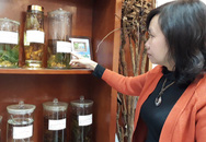 Thực hư cây dược liệu quý chữa khỏi ung thư?