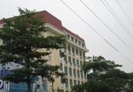 Hà Nội: Hàng cây xanh trồng dưới lưới điện cao thế giờ ra sao?