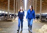 """Khám phá quy trình sản xuất của Abbott """"từ nông trại đến tay người tiêu dùng"""""""