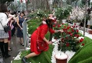 Hình ảnh xấu xí tại lễ hội hoa anh đào 2017: Mặc kệ hoa, miễn sao ảnh đẹp