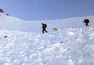 Bạn đồng hành bị tuyết chôn vùi, nhà leo núi nổi tiếng tự sát