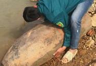 Hoảng hồn phát hiện quả bom dài hơn 1 mét ven sông Lô