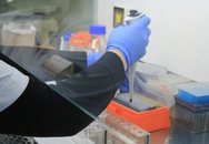 """Cái kết """"động trời"""" của người đàn ông 3 lần mang con xét nghiệm ADN"""