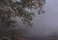Hà Nội: Garage ô tô bất ngờ bốc cháy khi nhân viên đang nghỉ trưa