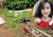 Vụ chồng giết vợ bằng 36 nhát dao: Công an mời em gái nạn nhân lên lấy lời khai