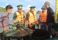 Bắt giữ 40.000 lít dầu lậu trên vùng biển Hải Phòng
