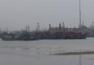 Huyện Tĩnh Gia, Thanh Hóa: Ngư dân khổ vì cửa biển bị bồi lấp