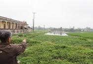 Xã Đồng Hóa (Kim Bảng, Hà Nam): Bán đất ruộng để trả 20 tỷ nợ công?