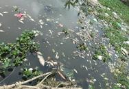 Huyện Bình Giang, tỉnh Hải Dương: Dân kêu cứu vì nguồn nước ô nhiễm