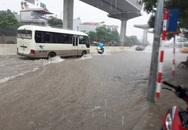 Hà Nội: Nơi mưa ngập trắng băng, dân thi nhau bắt cá, nơi chỉ đủ ướt đường