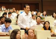Nhiều đại biểu đồng tình về cơ chế đặc thù cho TP Hồ Chí Minh