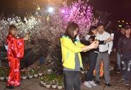 """Du khách mải mê """"check-in"""" trước hoa anh đào Nhật Bản"""