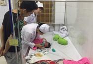 Hải Phòng: Kỷ luật hai nữ hộ sinh ghi nhầm giới tính trẻ sơ sinh