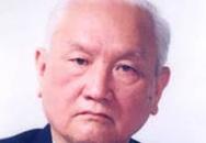 Giáo sư Toán học Nguyễn Cảnh Toàn qua đời