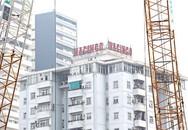 Hội Luật gia Việt Nam từng chỉ ra nhiều sai phạm trong vụ cổ phần hóa HACINCO