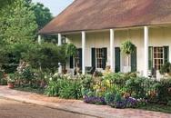 4 cách trang trí bằng hoa khiến sân vườn đẹp rực rỡ vào mùa hè