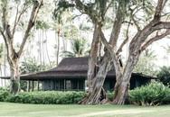 Ngôi nhà được xây từ năm 1940 được cặp vợ chồng cải tạo thành nơi nghỉ dưỡng đẹp đến khó tin