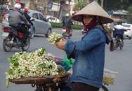 Kiếm chục triệu nhờ những mẹt hoa bưởi dạo