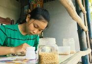 Cô học trò nghèo và ước mơ về thương hiệu tranh gạo