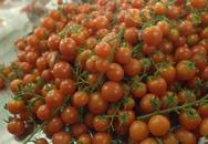 Mẹo đơn giản giúp bảo quản nông sản tươi ngon cả tuần