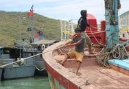Tàu chìm giữa biển, 10 ngư dân may mắn trở về từ cõi chết