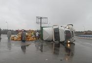 Người dân đội mưa gom 30 tấn dừa giúp tài xế