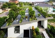 Ngôi nhà với khu vườn ấn tượng trên sân thượng ở Nha Trang được báo Mỹ ca ngợi