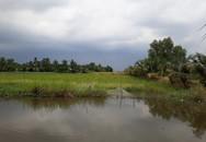 TP.HCM: Chính thức ban hành quy định mới về tách thửa đất