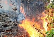 Cháy rừng dữ dội ở Hải Phòng