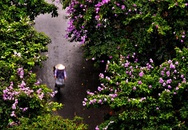 Ngày mai Hà Nội đón khí lạnh, dứt nắng nóng