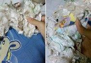 Thiếu phụ Thái Lan phát hiện gối dùng 2 năm chứa đầy băng vệ sinh, tã lót