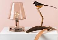 19 mẫu đèn trang trí đẹp lung linh làm điểm nhấn cho ngôi nhà bạn không nên bỏ qua