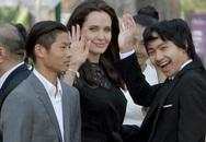 Angelina bị tố giả mạo giấy tờ nhận nuôi Maddox