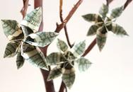 Không thèm bỏ tiền triệu, chị em tự làm cây tiền tài lộc tại nhà