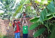 Giang Còi tiết lộ lý do lui về sống trong mảnh vườn 10.000m² ở quê