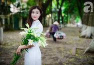 Hoa loa kèn đẹp ngỡ ngàng trên phố Hà Nội tháng Tư