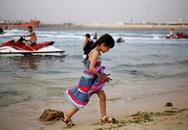 Ra biển chơi, 19 người thương vong vì trúng đạn cối
