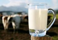 Bác sĩ nổi tiếng Nhật Bản: Uống quá nhiều sữa bò mới dẫn đến bệnh loãng xương