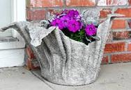 Biến khăn mặt cũ thành bình trồng cây lạ mắt