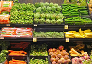 Vì sao cà rốt, hành tỏi của Việt Nam khó cạnh tranh với Trung Quốc?