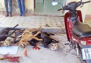 Trộm 5 con chó, 1 người bị đâm chết tại chỗ