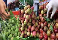 Những loại quả đầu mùa đắt xắt ra miếng ở miền Bắc