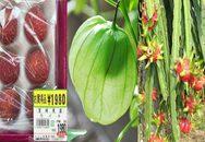 Những loại rau, quả tầm thường ở Việt Nam xuất sang Nhật lại đắt đỏ đến khó tin