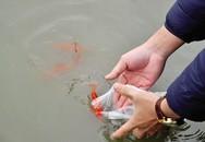 Nhà sư chỉ cách phóng sinh cá ngày ông Công, ông Táo